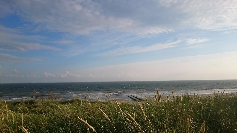 Helmgras en zee | Duinweg33 Vakantieverhuur